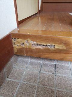 白蟻に食べられた玄関框